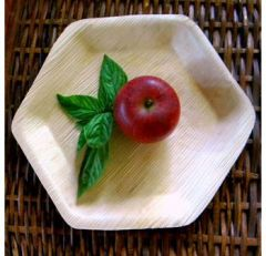Areca Hexagonal Leaf plate, Eco - Friendly, 100% Natural, Bio-degradable