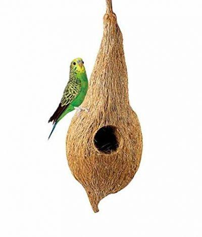Coir Bird Nest