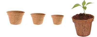 Coconut Coir Pots 6 inch x pack of 5