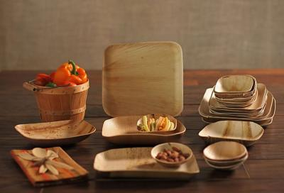 WHICH DINNERWARE IS THE BEST FOR PARTY AND CELEBRATION?