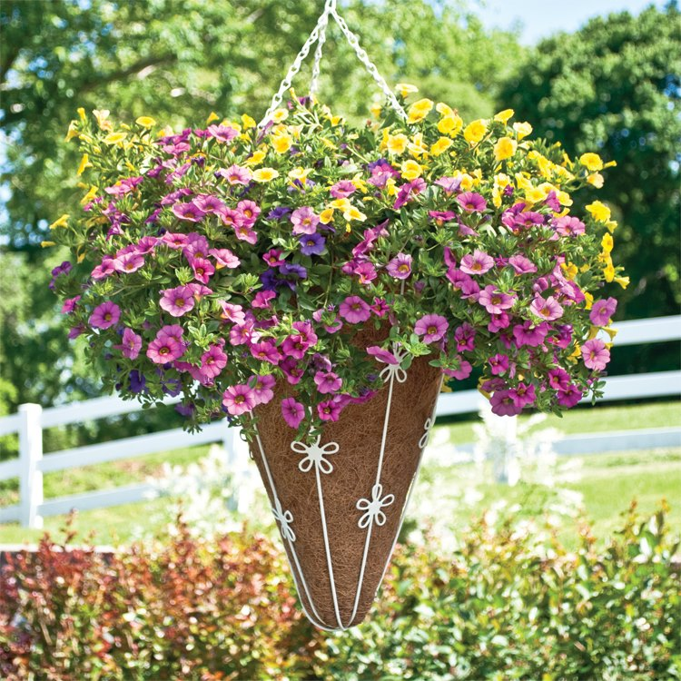 Garden Conical Hanger